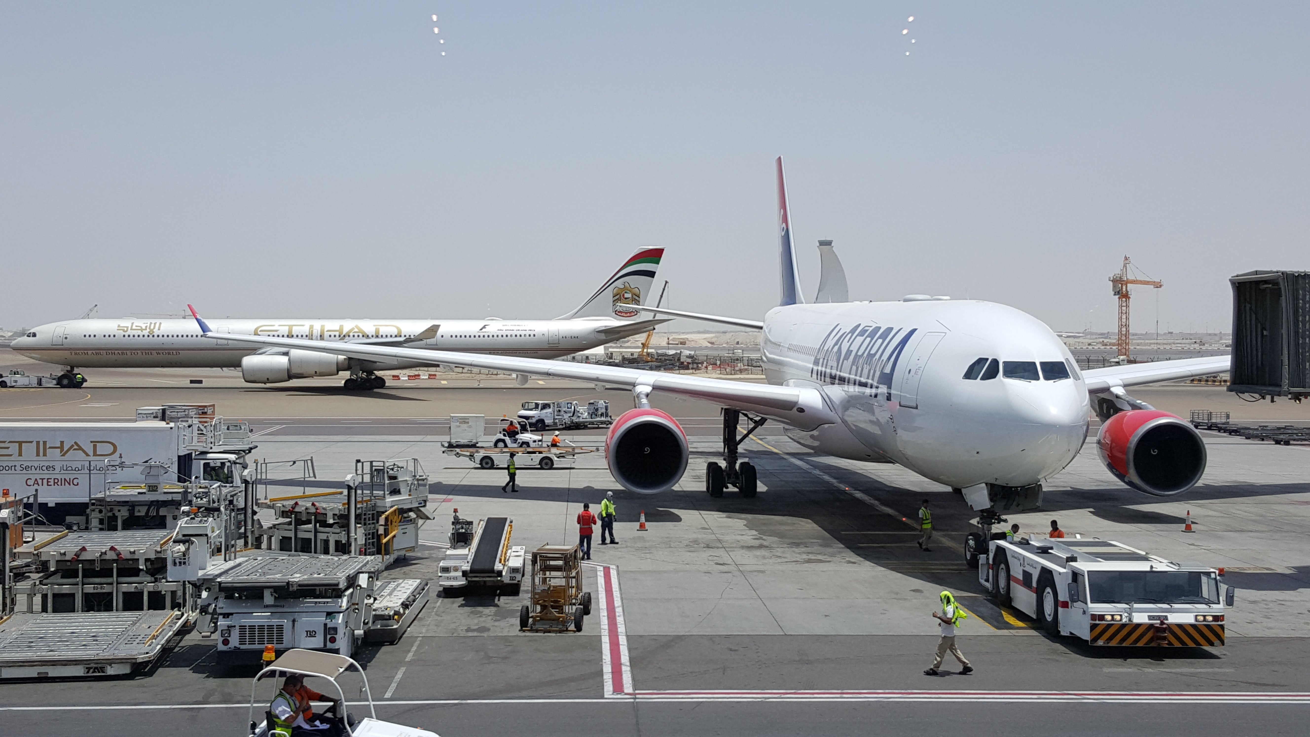 Air Serbia neće biti jedini plen Etihada u regiji? Foto: Petar Vojinović
