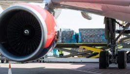 Kako se voće ili burek prevoze avionom?